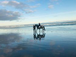horseriding2
